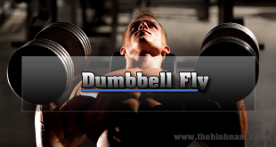 Dumbbell-Fly