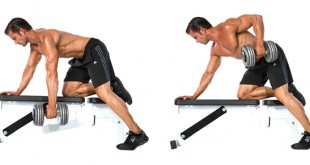 one-arm-dumbbell-row-exercise-guide
