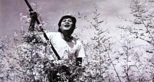 7e7ecbe41f 310x165 - Hậu trường khốc liệt của những phim Việt Nam kinh điển