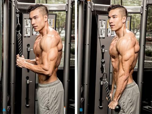 """finishing moves torching triceps graphics 1 - Các bài tập rèn luyện theo kiểu tập """"càng nhiều càng tốt"""""""