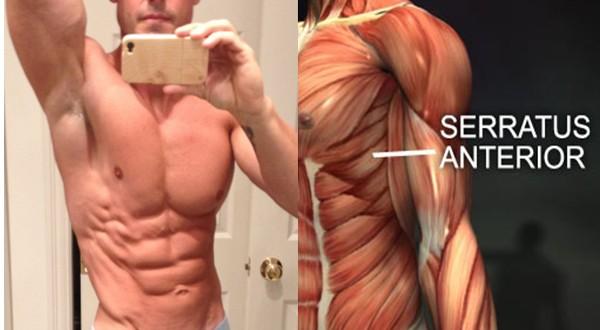 49413437e8 600x330 - bài tập tổng hợp các nhóm cơ dành cho nam, nữ , vào cơ mong, đùi ngực , vai , cánh tay, bắp chuối , đùi, cơ bụng.