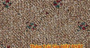29 310x165 - Sản phẩm thảm trải sàn Malaysia-0964486875