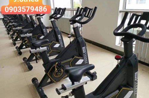 20 500x330 - xe đạp body strong 5817