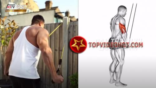 9 1 - bài tập phát triển cơ bắp trên
