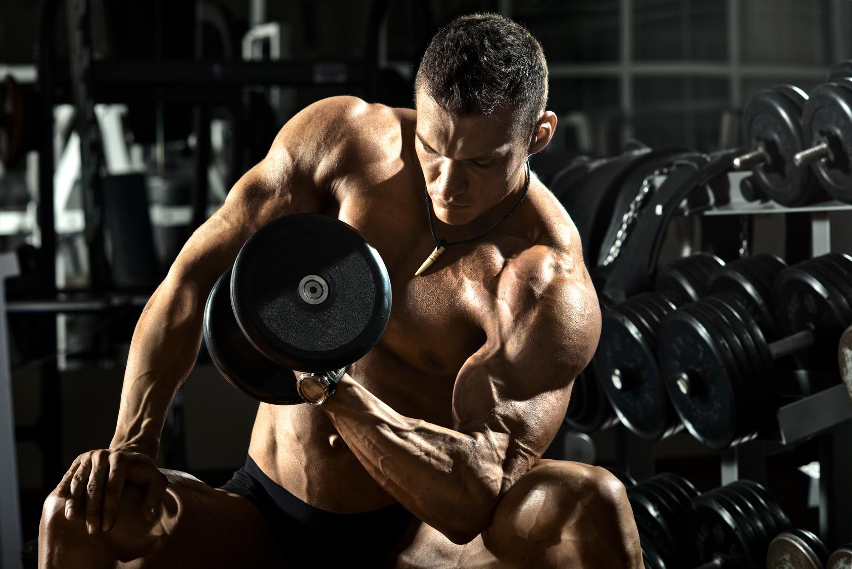 6f71f2ddef - Lịch tập Gym đa dạng tăng cường thể lực và độ dẻo dai của cơ bắp